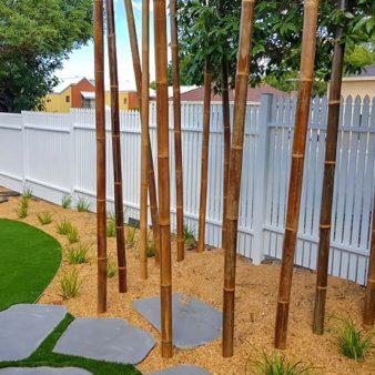 Highgate nature garden